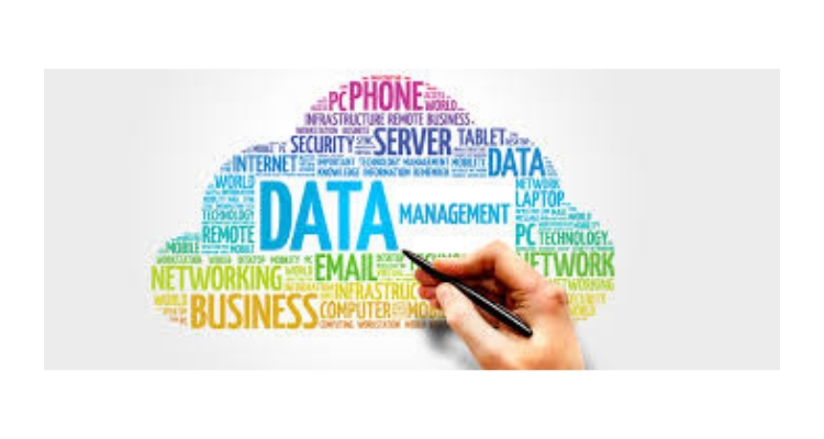Data Governance Services