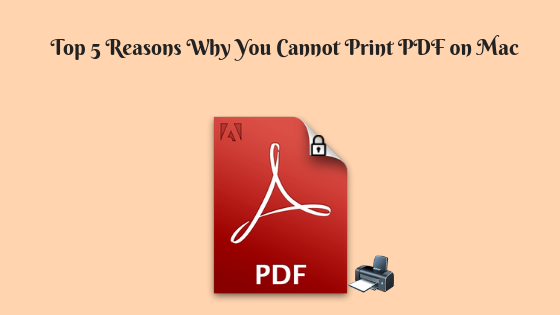 How to Print Protected PDF Document