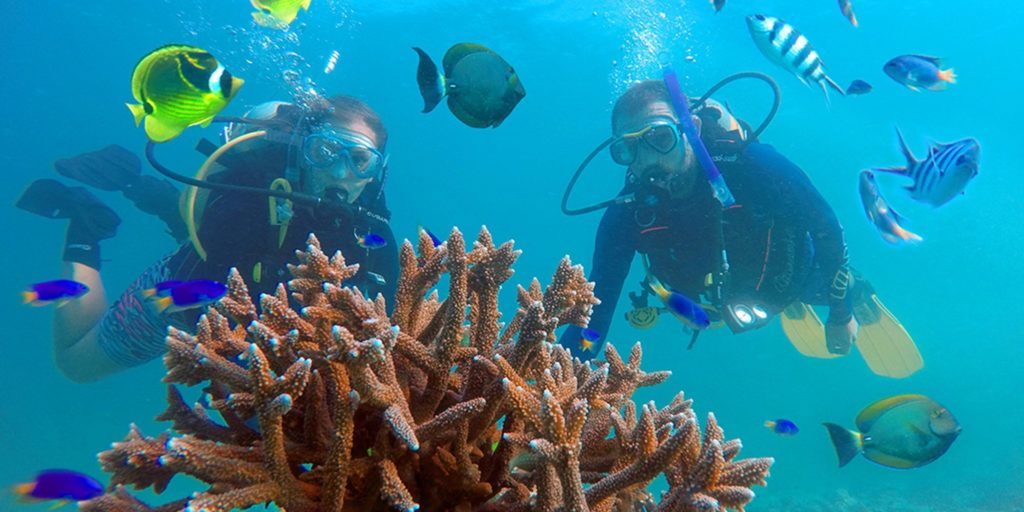 Seychelles Scuba Diving and Snorkeling