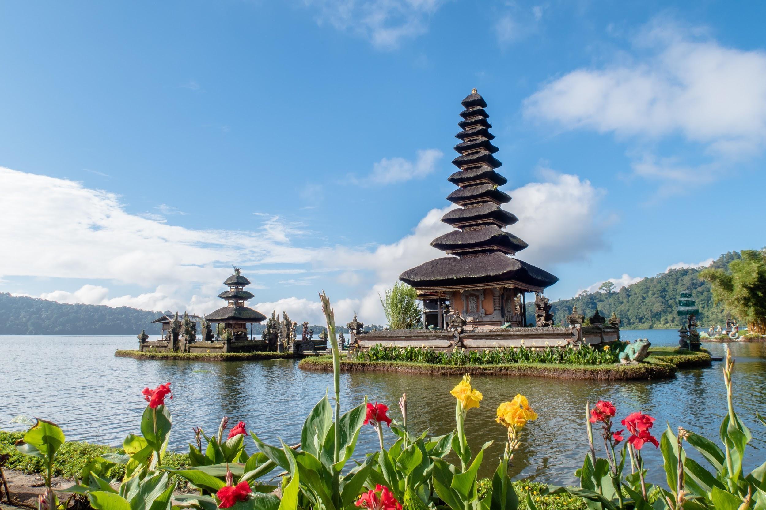 Diversity of Bali