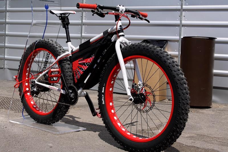 Fat Electric Bike