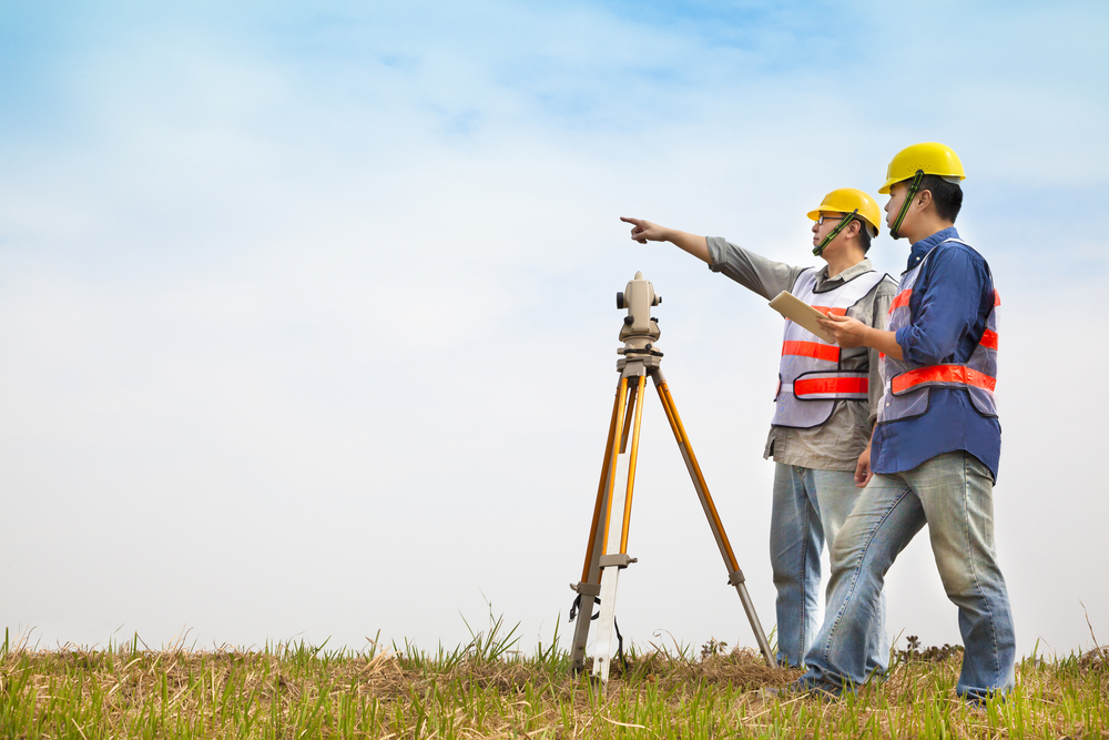 surveyor services